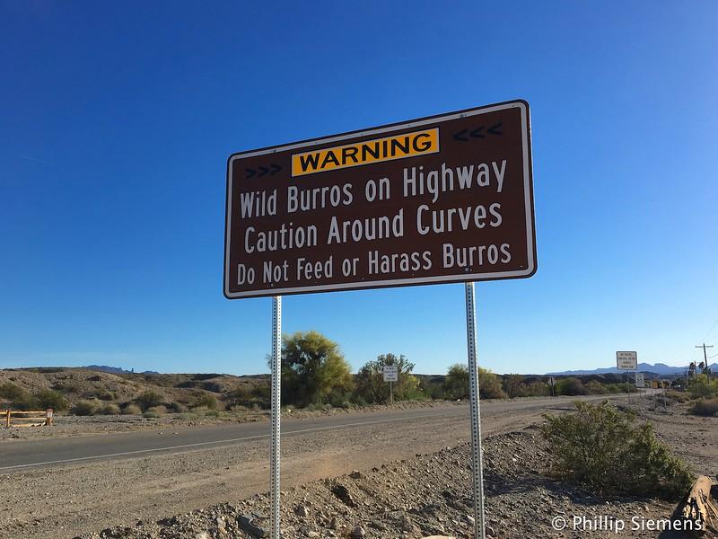 Interesting sign in Wyatt Earp, CA
