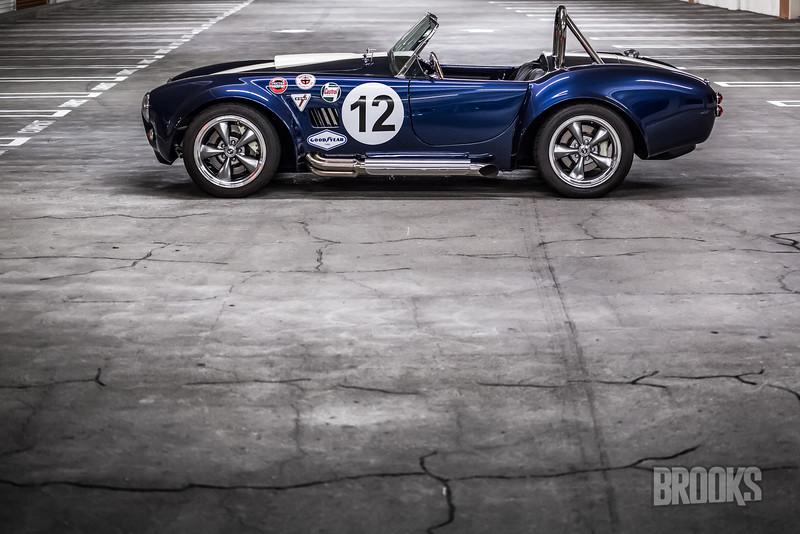 Cobra-298.jpg