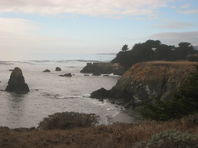 Sea Ranch at 23 Months