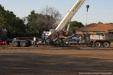 Mammoth Construction