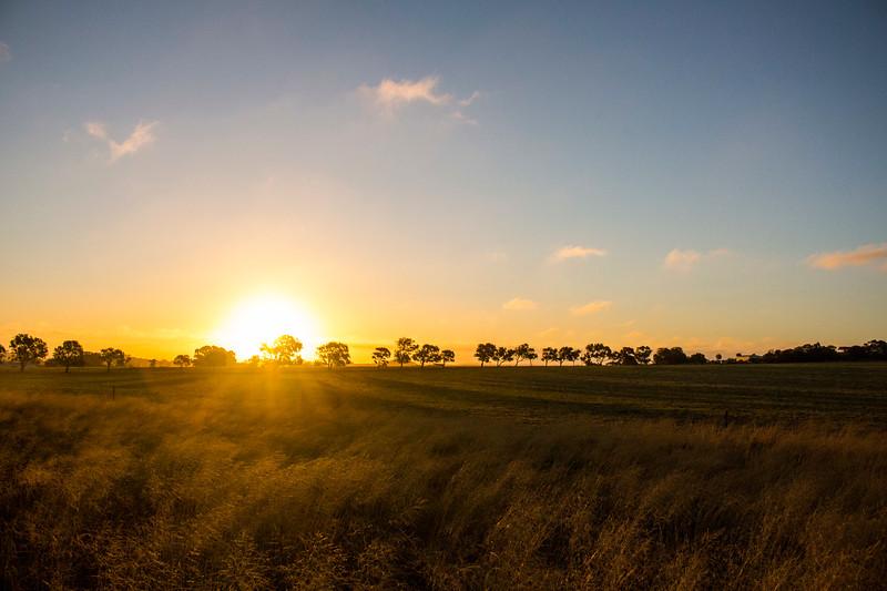 Bringo Sunset