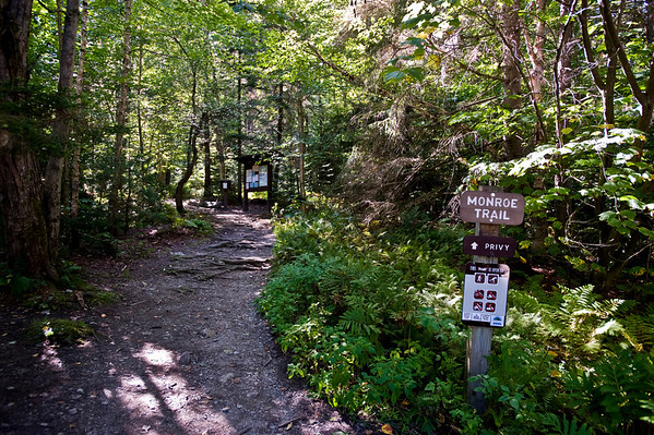Camels Hump Day Hike