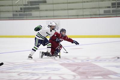 2/1/17: Girls' Varsity Hockey v Williston