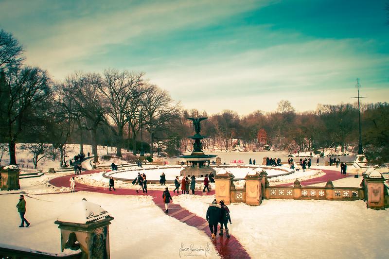 new-york-central-park-2021-nyc-photography-photographer-jorge-sarmiento-jr-newark-nj-IMG_7361.jpg