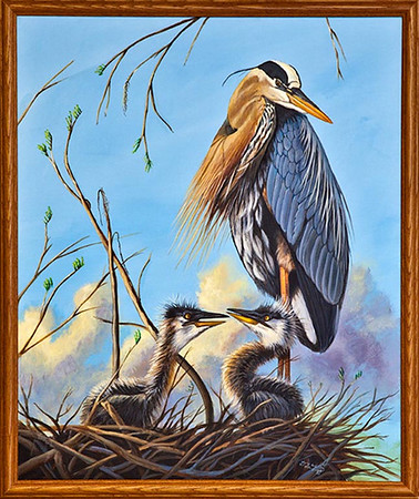 2010 Loxahatchee Visions Art Contest Winners