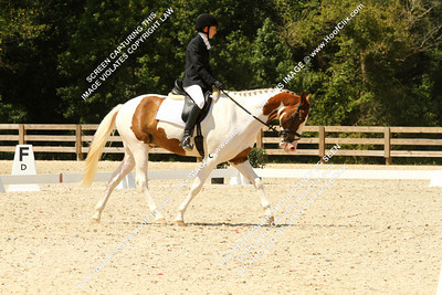 Caroline	Andrews	riding	Will You Be Mine	#	351