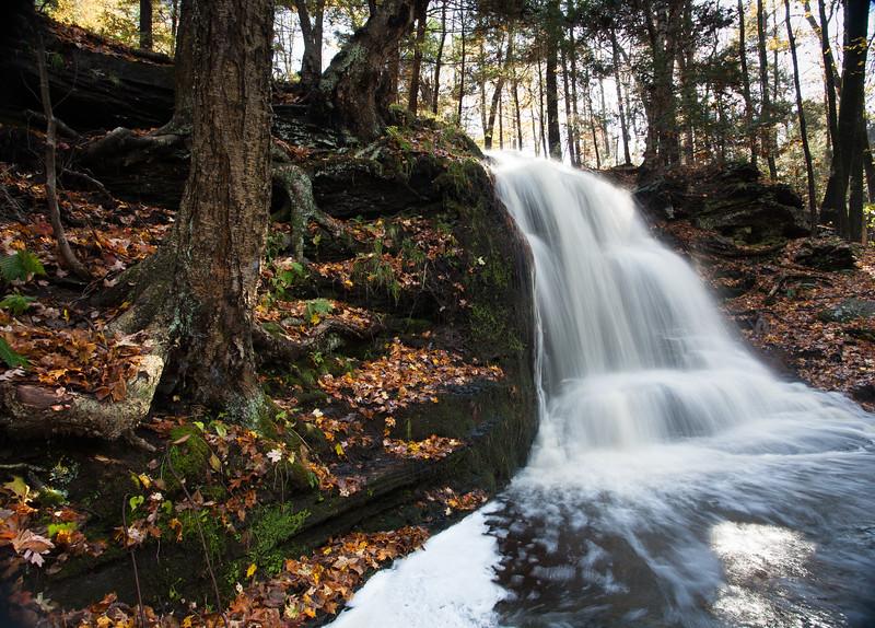 Autumn Waterfall (7807)