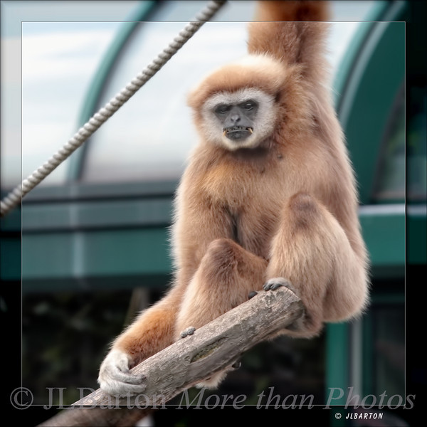 Boring, isn't it?