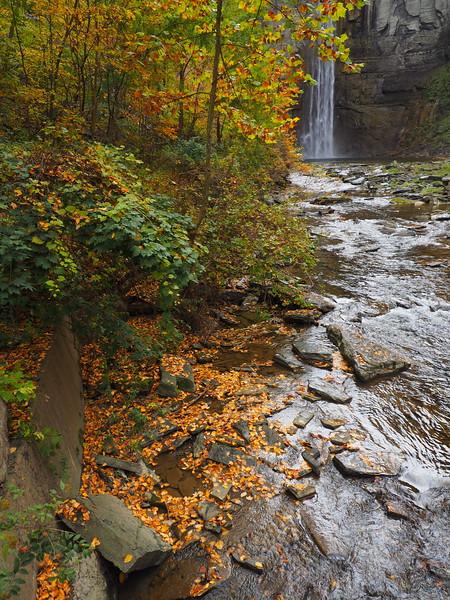 Taughannock Falls 5.jpg