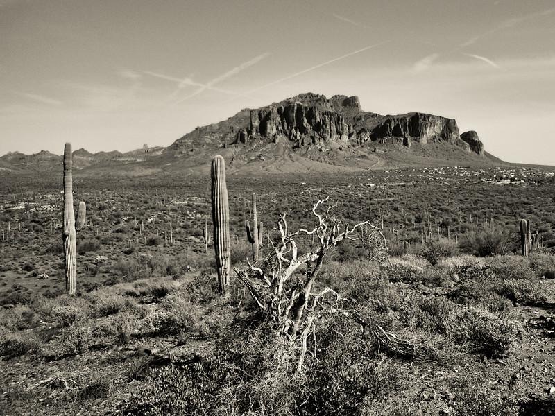 Horse Ride 2012_1245-Edit-Edit.jpg