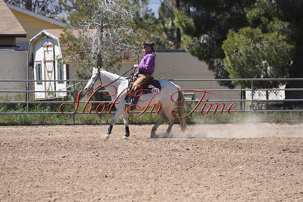Ranch Pleasure and Reining