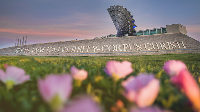 Located on the South Texas Coast, Texas A&M University-Corpus Christi enrolls more than 12,000 students and offers more than 80 of the most popular degree programs in the state.