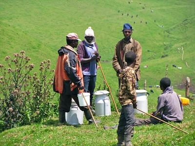 Rwanda Micro-Dairy Project, March 2013