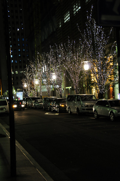 Jan282011_Tokyo_0284.JPG