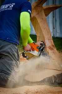 Thorseby 2017 - Chainsaw Carving @ Thorsbey
