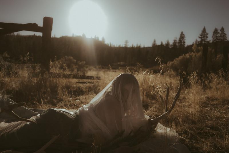 frazierparkphotography-29.jpg