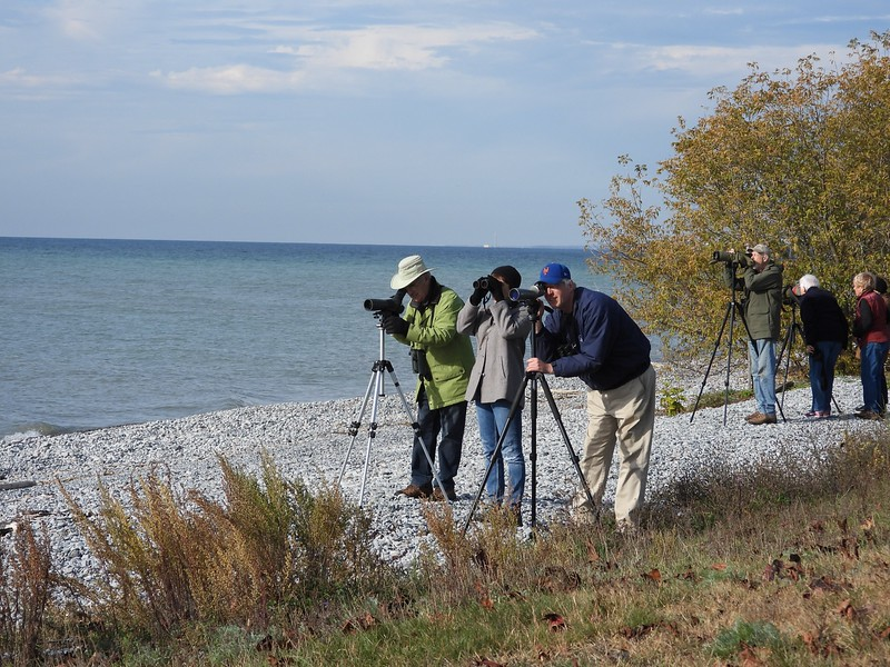 WBFN members looking though spotting scopes to see distant White-winged Scoters