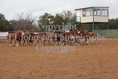 Saturday Morning Bucking 2