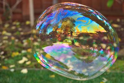 2008 Family Bubbles