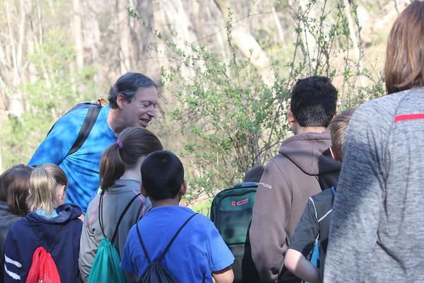 Wissahickon Gorge 2016