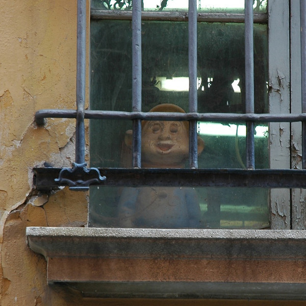 Peeking Out the Window - Bologna, Italy