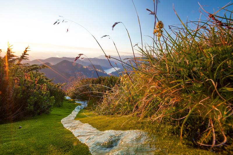 Alpine Meadow, British Columbia, Canada.
