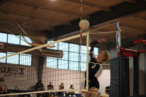 Lamar Mustang Volleyball (2009)