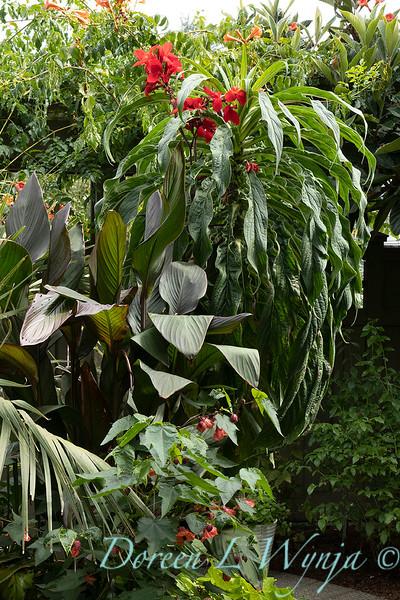 Lisa Bauer - designer's garden_1312.jpg