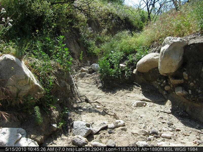 20100515030-Doc Larson Trail Recon.JPG