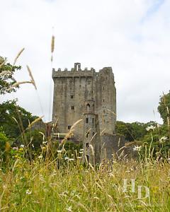 2014-07 Blarney Castle
