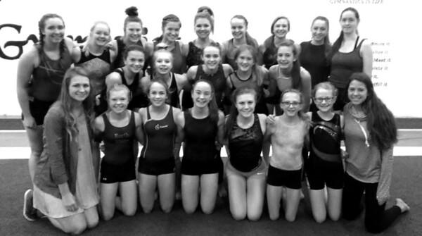 Delano Tigers Gymnastics 2016-17