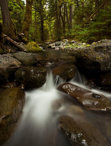 2011_IMG_0750_Canon EOS 5D Mark II.jpg