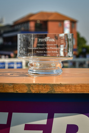 The totequadpot Insure Your Placepot Last Four Maiden Auction Stakes