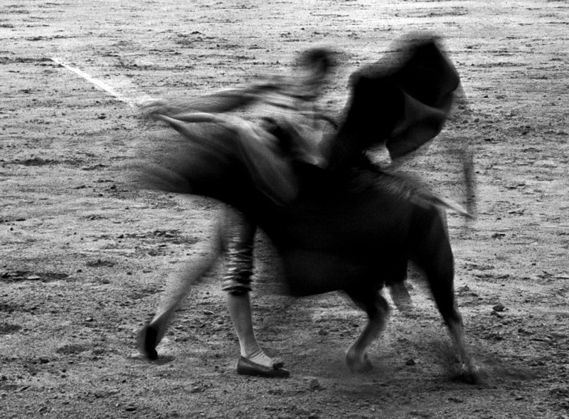 Bullfighting is criticized by animal rights activists, referring to it as a barbaric blood sport where the bull suffers severe stress and a slow, torturous death. 