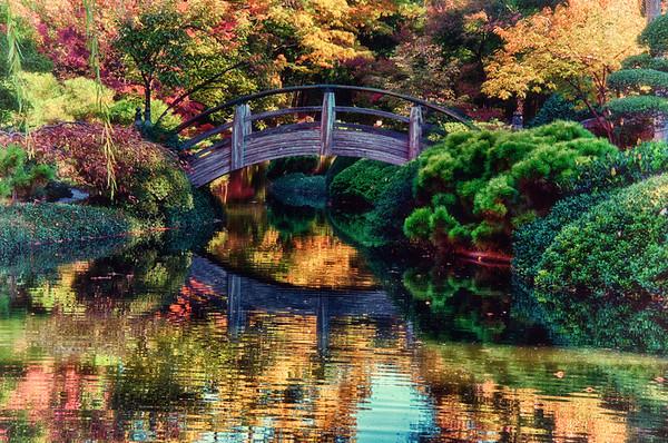 Ft. Worth - Japanese Gardens - 2014-11-19