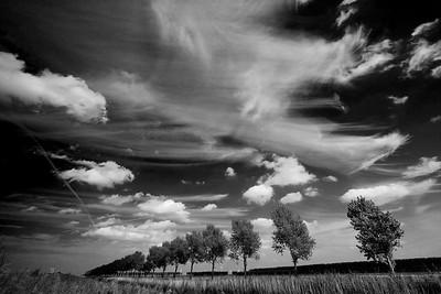 Polderluchten in Zwart-wit