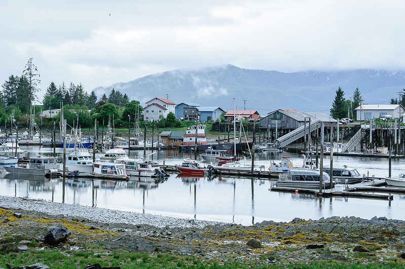 20170523-Alaska-02728.jpg