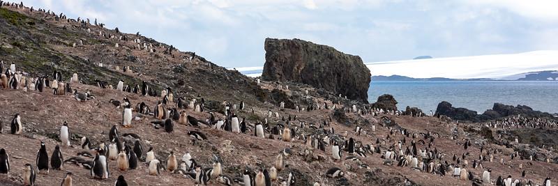 2019_01_Antarktis_01821.jpg