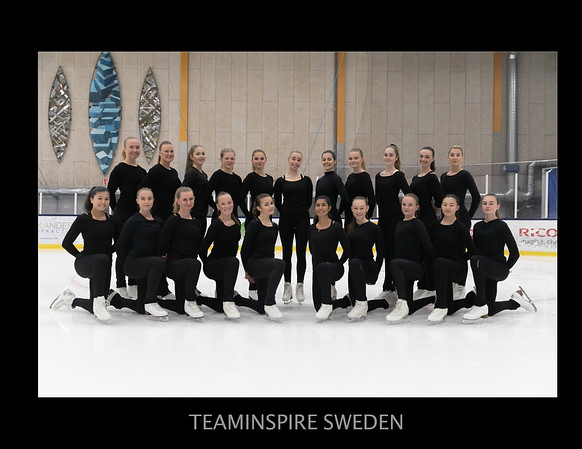 Team-Inspire-SWE