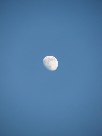 Moon Daytime 20071220