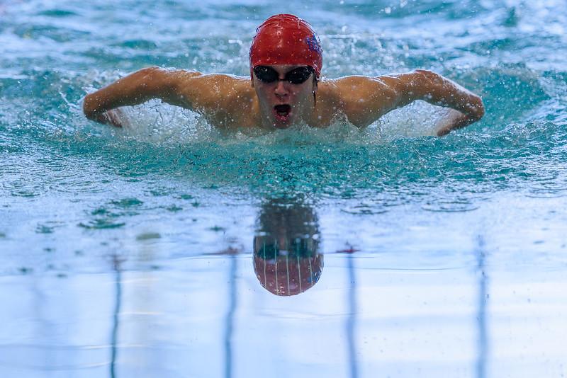 KSMetz_2017Feb10_8734_SHS Swim Centennial League Meet.jpg