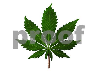 carthage-man-gets-prison-in-stolen-marijuana-evidence-case