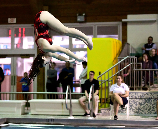 2/19/2019 Mike Orazzi | Staff Bristol Swim Team's Marissa Stone dives during Tuesday's meet with Middletown in Bristol.