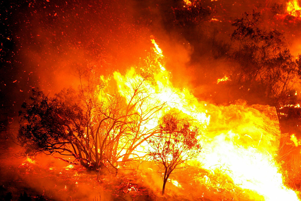 . SAN DIEGO - OCTOBER 27:  Dry trees and brush burn as firecrews in the Cedar Fire October 27, 2003 near Lakeside in San Diego, California. The death toll stands at 13, with more than 1,000 homes being reduced to ashes as southern California fires continue to burn. Winds have eased a bit, but 30,000 homes remain threatened by the fires, which have charred more than 400,000 acres, according to officials. Davis, who has activated the National Guard, predicted damages will be in the billions of dollars.  (Photo by Donald Miralle/Getty Images)