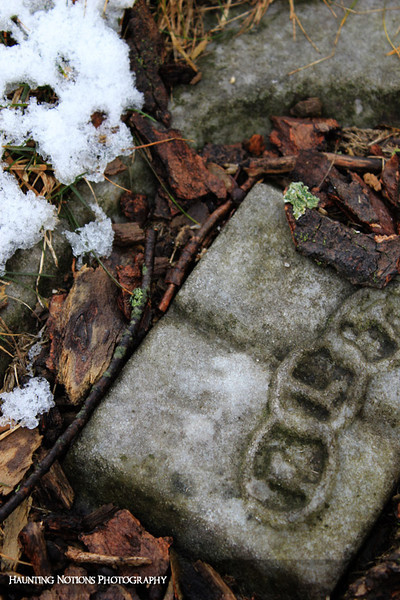 Center Fold (Gaines Cemetery, Gaines Township MI)