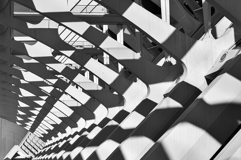 Shadows in the Ribs