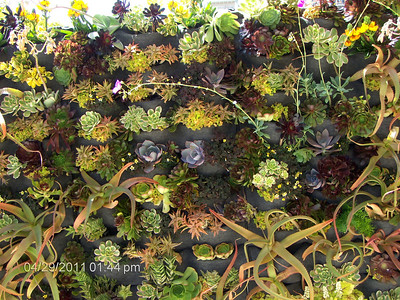 Decorator Showcase Home 2012 San Francisco, CA