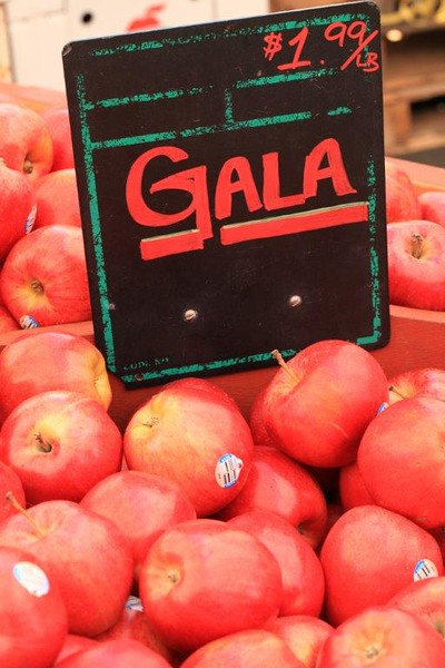 Gala apples 4 sale 8662.jpg