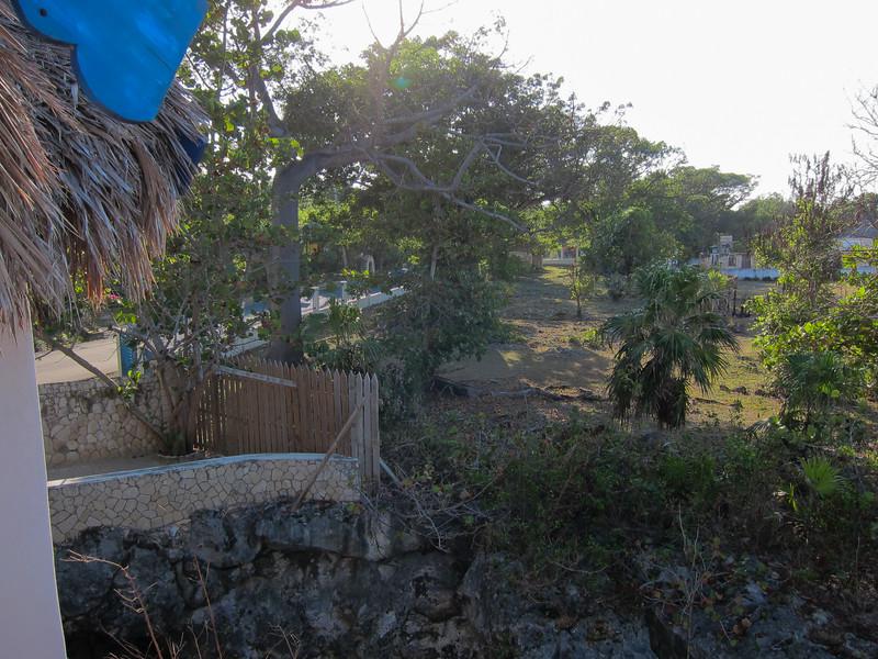 20101224-082121_BE7f_Canon PowerShot S95.jpg