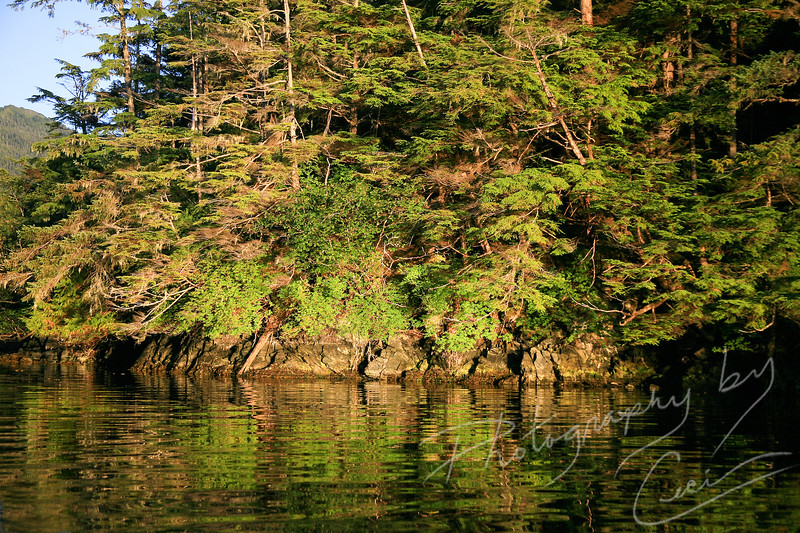 Waters of Sitka